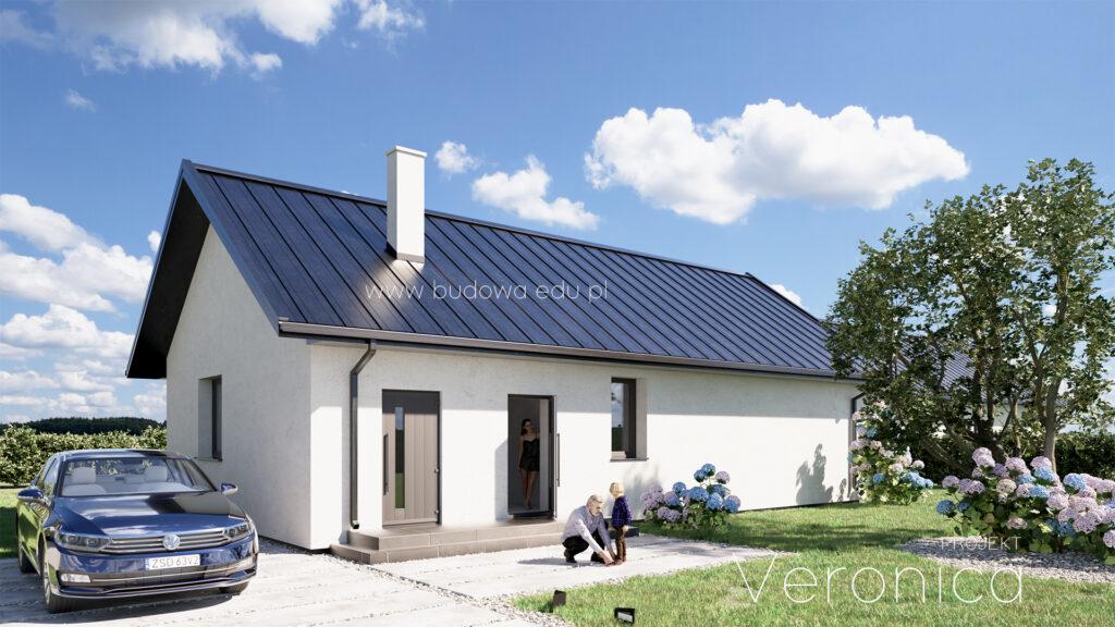 Projekt domu parterowego do 100m2